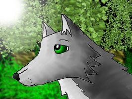 Forest Grey Wolf by icewormie