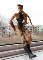 Cammy Play-ing it cool by OldPilot44