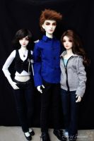 Twilight Family 1 by Sheilagold