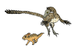 Velociraptor mongoliensis / Protoceratops andrewsi by MommaCabbit