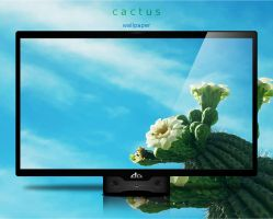 Cactus by Momez