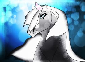Adoptable horse (5 points) by Adoptable-Horses-INC