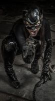 MCC: CATWOMAN Cosplay by MummeryComics