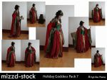 Holiday Goddess Pack 7 by mizzd-stock