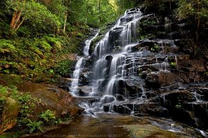 Sylvia Falls - Blue Mountains by La-Vita-a-Bella