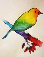 Rainbow Swallow by Draughtman