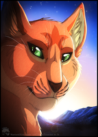 Firestar by ThorinFrostclaw