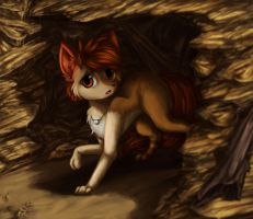 AT. Sunny the Desert fox by Aschenstern