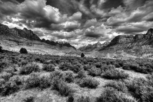 Zion in Black and White by ernieleo