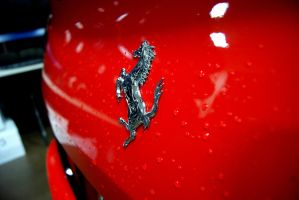 The Prancing Horse by rioross