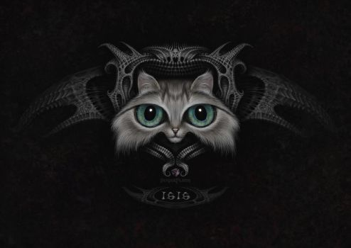 ISIS the cat by Sugarflesh