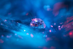 I just dropped love and glitter all over the place by brokenbokeh