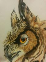 Great Horned Owl by Uralensis