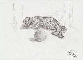 Tiger Sketch by musicalartfreak