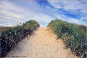 Way to the beach by brijome