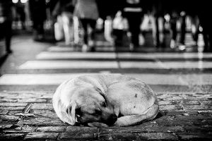 Left behind (BW) by AriCaFoix