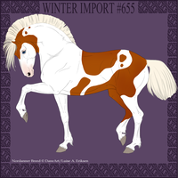 Winter Import #655 by DovieCaba