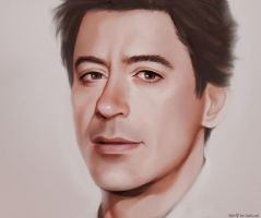 Robert Downey Jr by Hallpen