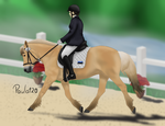 Fjord Horse Competition by Paula120