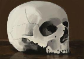 Skull by frostherz
