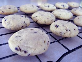 Lavender Vanilla Bean Cookies by BreeBrains
