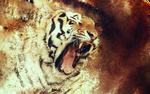 tiger wallpaper by sdort-hatred