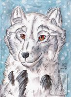 The snow/Head PC for Betelgeuse-Neva by AJIENA