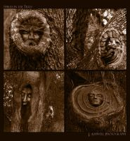 Spirits in the Trees by Isquiesque