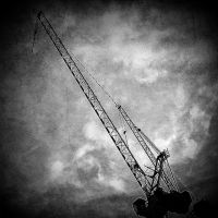 the language of cranes by RickHaigh