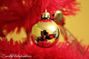 Christmas time by SmileyDignam