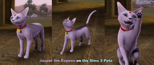 Jasper on the Sims 3 Pets by CheezieSpaz