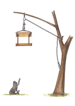 Cat Proof Bird Table by matt-g-ellis