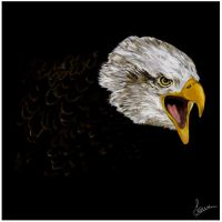 Eagle by Lrbcn by CGPaintings