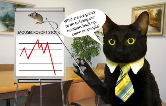 Business Cat Lecture by RUGodsOrAreUMen