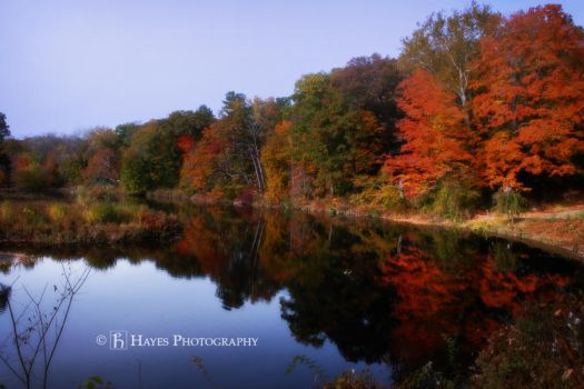 New England Autumn by HayesPhoto