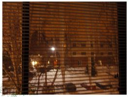 2010 10 02 Snow Pictures 00 by lilly-peacecraft