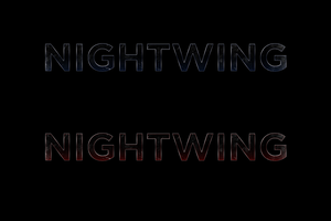 NIGHTWING - LOGO by MrSteiners
