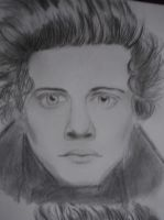 Harry Styles by diary1