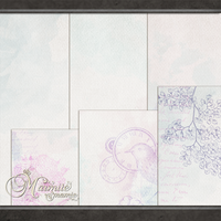 Vanity Fair Paper Pack by MarmiteMamie