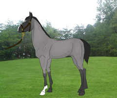 ShA World Reign by StormHillAcres