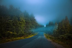 Fog road by dSavin
