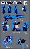 [OLD] Midnight Sketch Refrence sheet by MidnightSketches