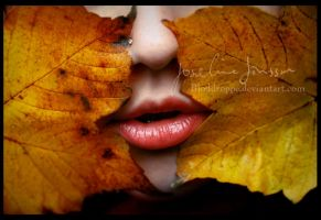 .Taste of Autumn. by Bloddroppe-nature
