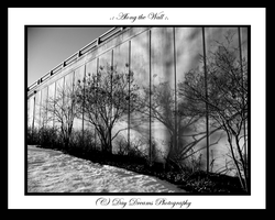 .:Along the Wall:. by DayDreamsPhotography