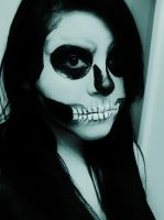 Skull Makeup. by Darxen