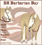 SK Barbarian Bay D. by SkylineBB