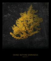 Shine Within Darkness by MBKKR