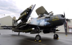Skyraider Startup 3 by shelbs2