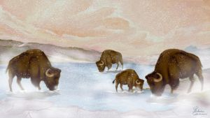 Bisons in winter by Pridipdiyoren