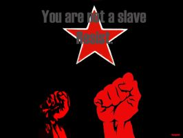 You are not a slave by Renegade-X2